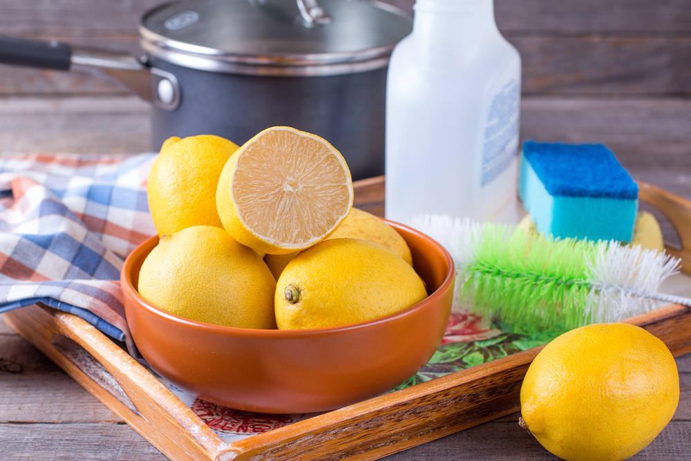 """La Tendencia del """"Green Cleaning"""" gana Terreno entre los Fabricantes de Productos de Limpieza"""